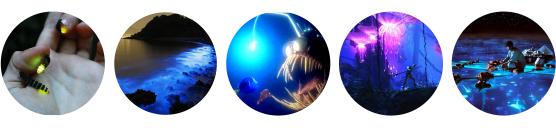 organisme bioluminescent