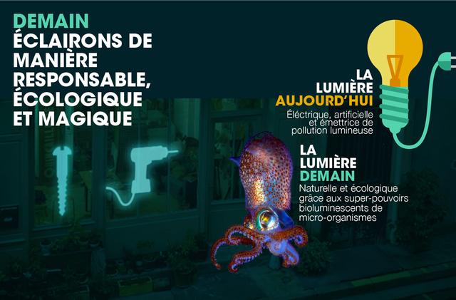 système bioéclairage français